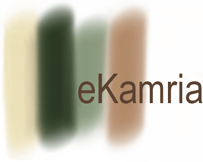 eKamria | Web Development - Social Media - Content Management - Email Marketing - Based in Syracuse, NY